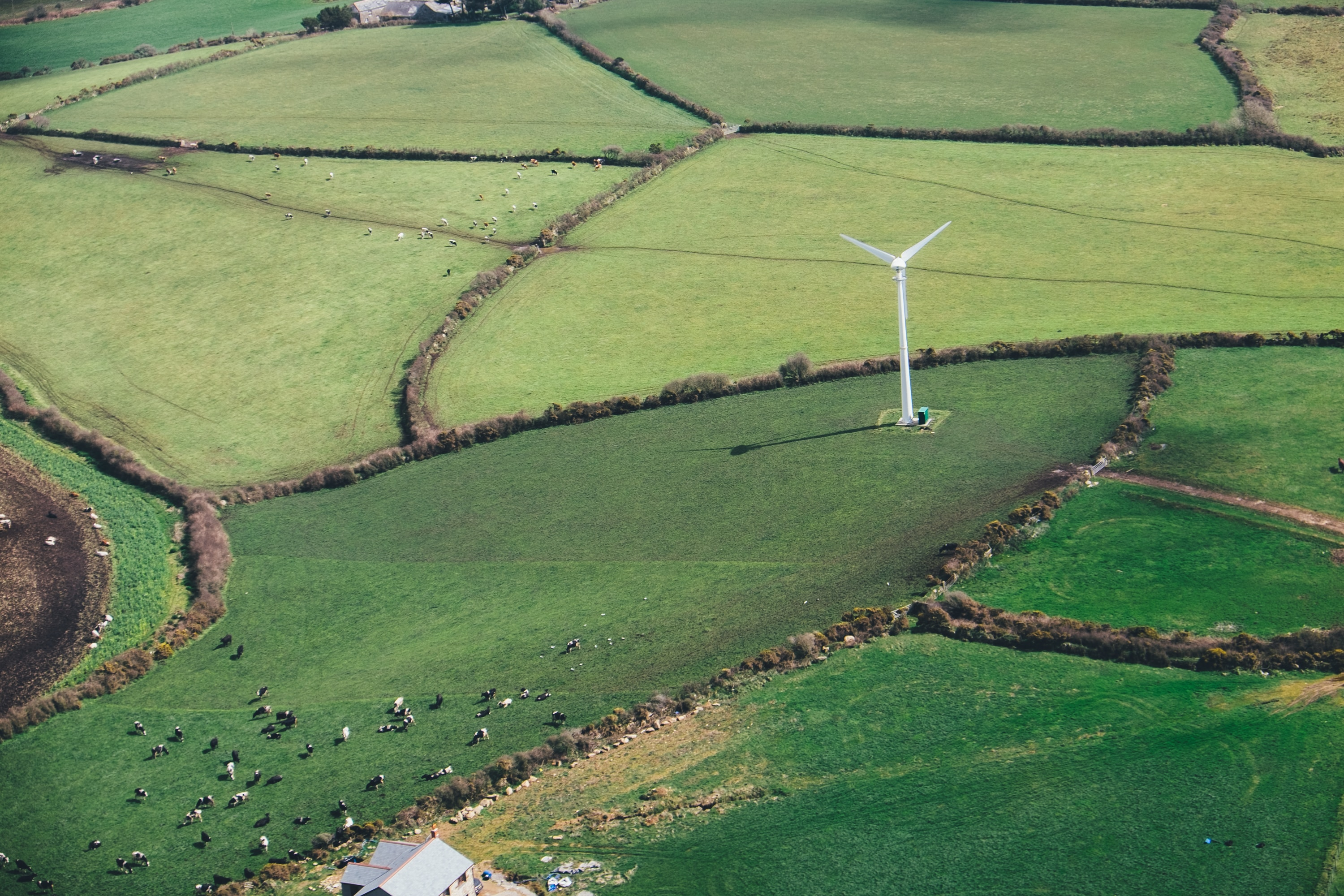 Countryside Stewardship 2021:  Now available for applications